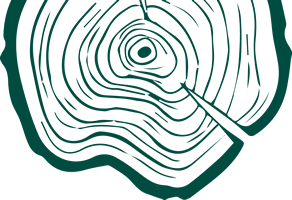 Wood Outline