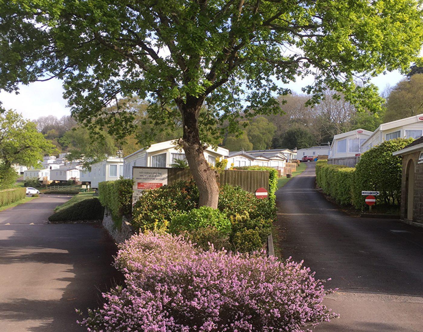 Timber-Vale-Slider-Image-Lyme-Regis-Caravan-Park-Campsite-Dorset-Jurassic-Coast-Dorset-Campsite-4